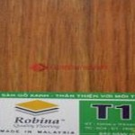 San-go-Robina-T12