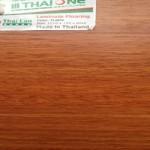 san-go-thaione-TL804